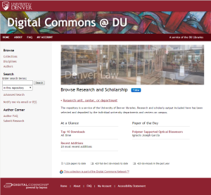 DigitalCommonsBlog2